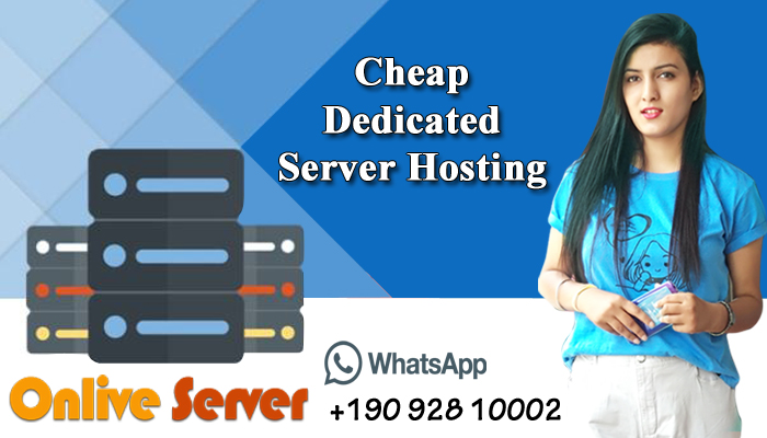 Grab The Professional Cheap Dedicated Server Hosting Plans