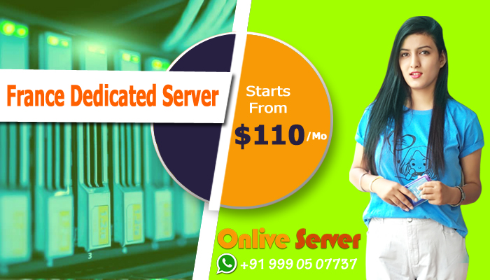 How France Dedicated Server Hosting Dominates the Other Web Hosting Solutions?